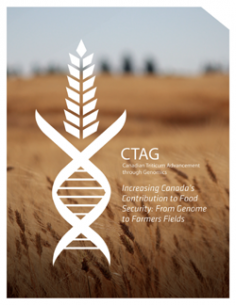 CTAG Booklet
